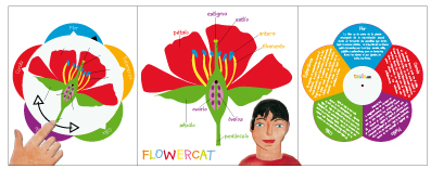 Flowercat instructions